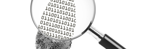 Using A Forensic Accounting Expert In A Fraud Investigation